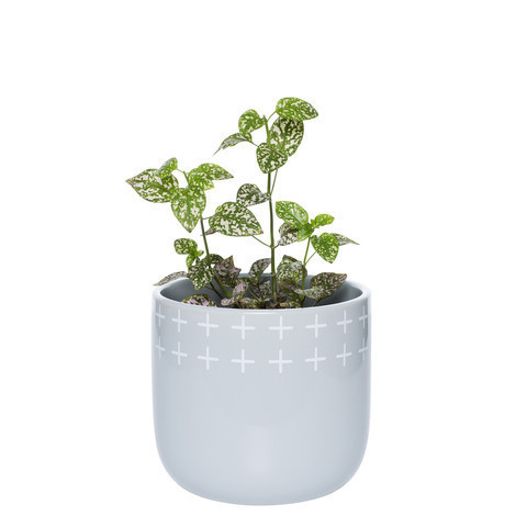 Otis Plant Pot Small Silver $34.99