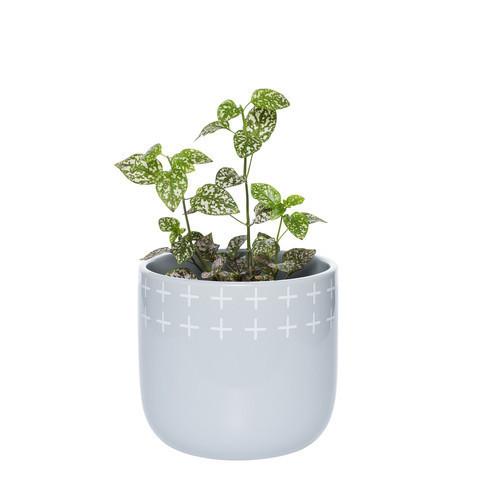Otis Plant Pot Small Silver $34.99