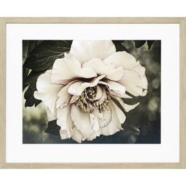 Golden-Era-II-Print-84x63cm