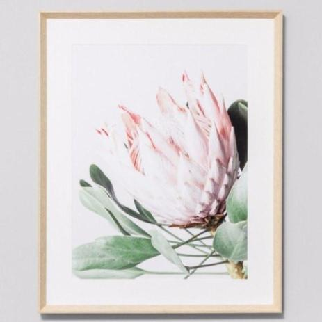 Framed Print Protea Flower $475.00NZD