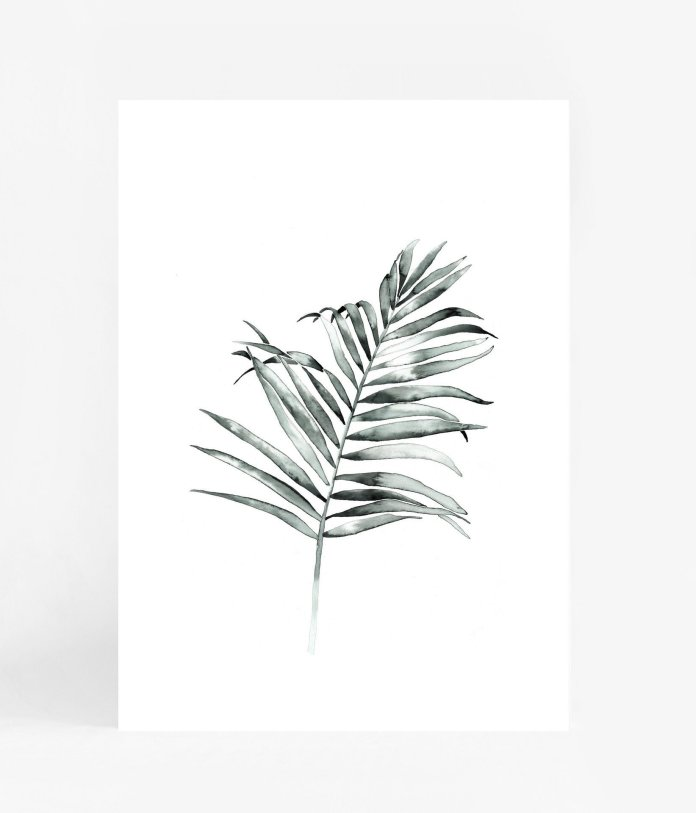 Palm Frond A3 Print $ 69.99