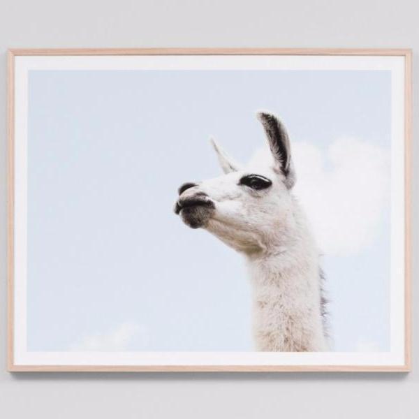 Framed Print Llama Sky $ 329.00