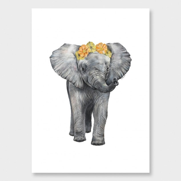 baby_elephant_hero.jpg